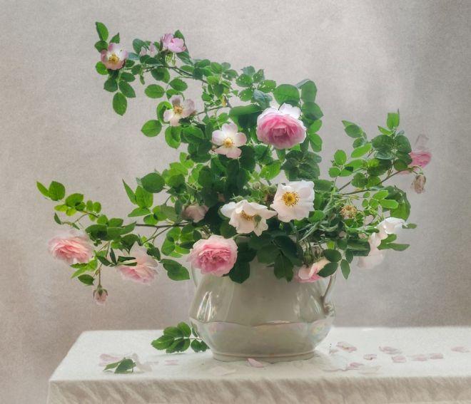 Binh hoa